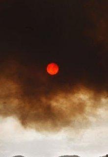 """Книга """"Солнце Торбуса"""" читать онлайн"""