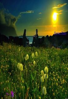 """Книга """"Dandelion Sunrise"""" читать онлайн"""