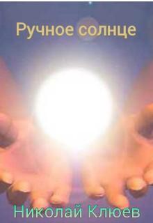 """Книга """"Ручное солнце"""" читать онлайн"""
