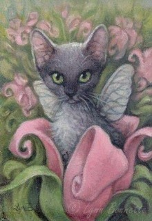 """Книга """"Клотильда - дочь пирата (кошки - наше фсё)."""" читать онлайн"""