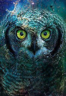 """Книга """"Глаза совы"""" читать онлайн"""