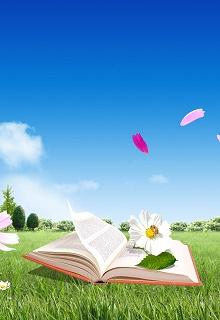 """Книга """"Отзывы на мои романы """" читать онлайн"""