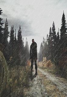 """Книга """"Лабиринт Зоны. Петля Времени"""" читать онлайн"""