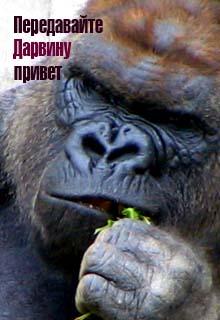 "Книга ""Передавайте Дарвину привет"" читать онлайн"