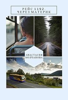 """Книга """"Рейс 1192. Через материк."""" читать онлайн"""
