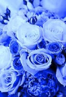 """Книга. """"Там цветут синие розы..."""" читать онлайн"""