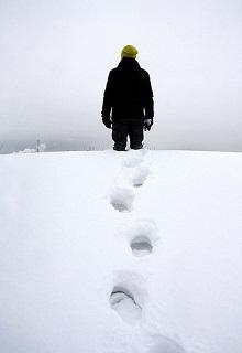 """Книга """"Снова лягут на землю снега"""" читать онлайн"""