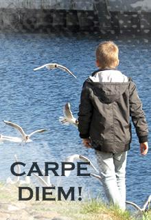 "Книга. ""Carpe diem!"" читать онлайн"