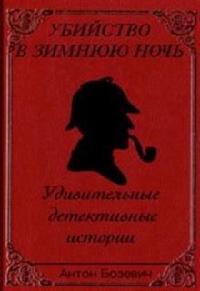 """Обложка книги """"Убийство в зимнюю ночь"""""""
