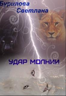 """Книга """"Удар молнии"""" читать онлайн"""