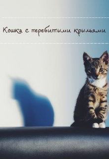 """Обложка книги """"Кошка с перебитыми крыльями"""""""