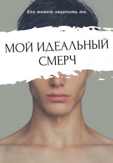 """Обложка книги """"Мой идеальный смерч"""""""
