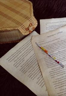 "Книга ""Записки из сундука"" читать онлайн"