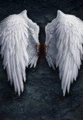 """Обложка книги """"Ангел с небес"""""""