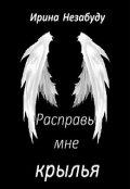 """Обложка книги """"Расправь мне крылья"""""""