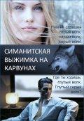"""Обложка книги """"Симанитская выжимка на карвунах"""""""