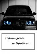 """Обложка книги """"Принцесса и Бродяга"""""""