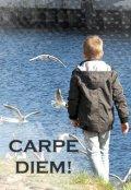 """Обложка книги """"Carpe diem!"""""""