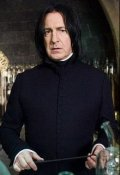 """Обложка книги """"Ворон. Подлинная история лорда Северуса Тобиаса Снейп-Принц."""""""