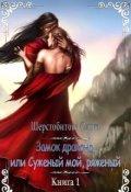 """Обложка книги """"Замок дракона, или Суженый мой, ряженый... (книга первая)"""""""
