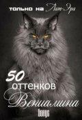 """Обложка книги """"50 оттенков Вениамина"""""""