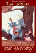 """Обложка книги """"Как дракон спас принцессу"""""""