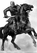 """Обложка книги """"Трусливый рыцарь"""""""