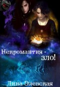 """Обложка книги """"Некромантия - зло!"""""""