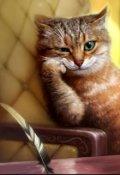 "Обложка книги ""Пол-кота"""