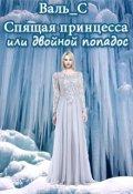 """Обложка книги """"Спящая принцесса или двойной попадос."""""""