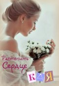 """Обложка книги """"Растопить сердце Кая"""""""