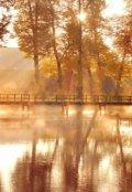 """Обложка книги """"Солнце в воде журавля"""""""