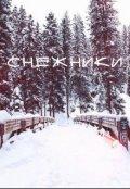 """Обложка книги """"Мороз. Снежные колдуны"""""""