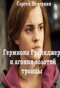 """Обложка книги """"Гермиона Грейнджер и агония золотой троицы"""""""
