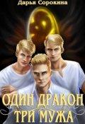 """Обложка книги """"Один дракон — три мужа"""""""