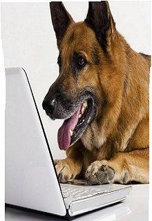 """Книга. """"Компьютерный салон, или Удивительное рядом"""" читать онлайн"""